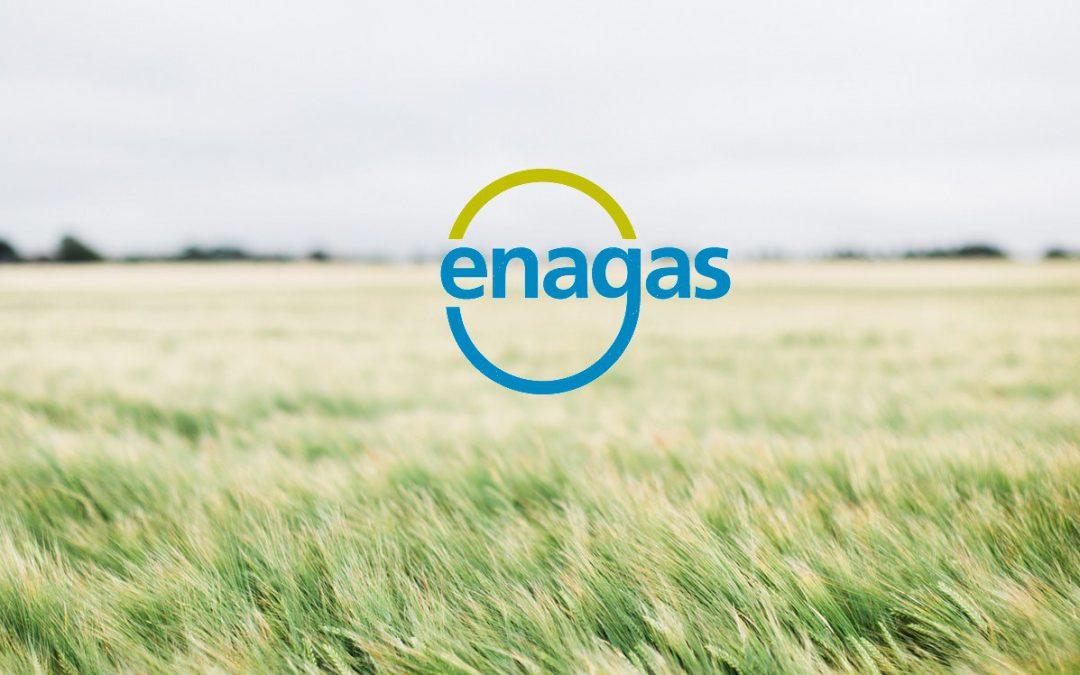 ENAGÁS (ENG) | Análisis de resultados